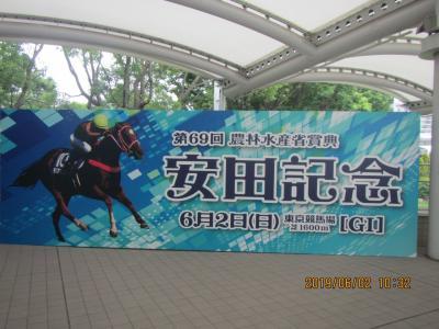 東京競馬場でダラダラしたよ。アーモンドアイの進路を妨害した武豊許さん!涙