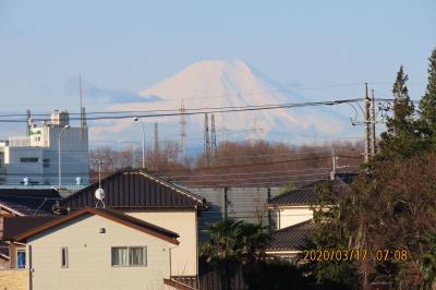 久しぶりに富士山を見ました