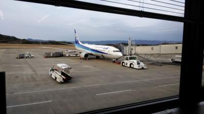 2020年フライトレビュー~4レグ目 ANA NH782 長崎→伊丹