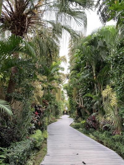 2019年9月バリ島旅行記④マッサージ三昧の旅最終章