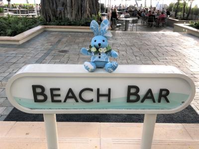 ハワイ ⑩『モアナサーフライダー ウェスティンリゾート&スパ』ホテル『シェラトンワイキキ』インフィニティプール♪新作モアナサーフバニー&ベア
