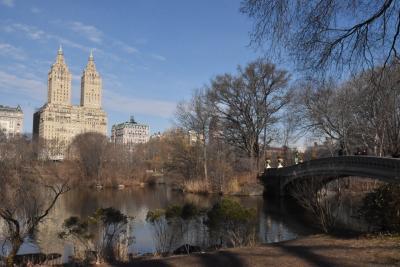 ドキドキ New York 2020冬 ⑥セントラルパーク ~ メトロポリタン美術館
