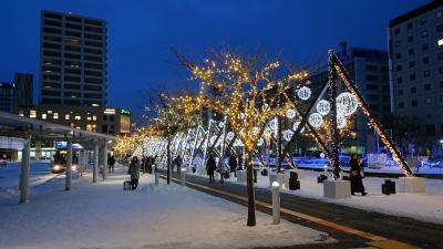 北海道旅行2019-20冬 6日目  函館(ホテルWBF函館 海神の湯  )