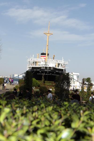 春日和の横浜港