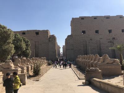 エジプト ルクソール東岸