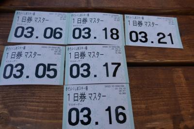 18年ぶり 息子とスキー (犬なき喪失を癒す旅③) 木曽福島スキー場はきっと大丈夫!!
