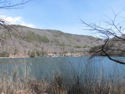 2020春18きっぷの旅:蛾ヶ岳、四尾連湖、みたまの湯、武田神社そして山梨ほうとう小作
