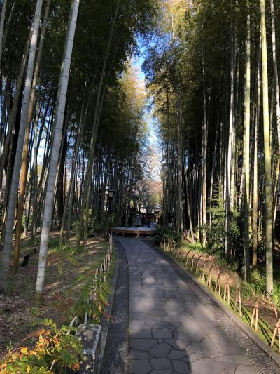 2020 独鈷の湯、修禅寺、日枝神社、竹林の小径 観光