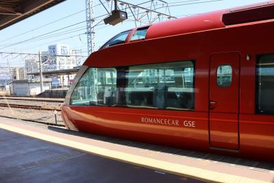 GSE×185系×東海バス、鉄道とバスを乗り継ぎ新宿から河津まで。