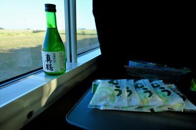 結果呑み鉄と化してしまった、仙台からひたちで帰る旅行