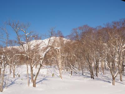 パウダースノーを求めてニセコへ、でも暖冬 2月編