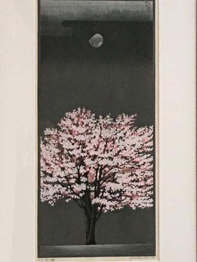 桜、咲きましたので!