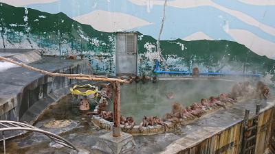 北海道旅行2019-20冬 8日目  函館(湯の川温泉 ホテル万惣 )前編