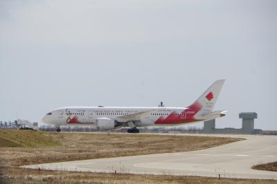 ANAとJALの共同運航便を見にいこう 前半