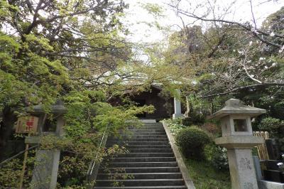 鎌倉長勝寺-2020年春