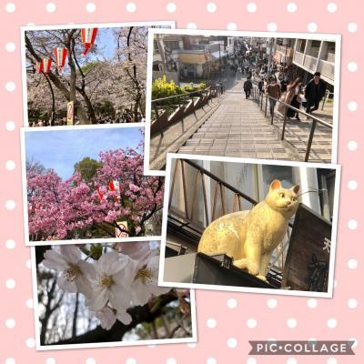 ぶらり東京その② 上野公園ので桜を見てから谷中銀座をぶらりする。