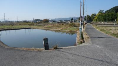 お墓参りにかこつけて コロナ騒動下の天理「淡水  鰻重」も食す