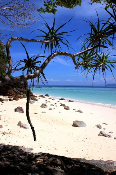★極楽タイ・最後の楽園リペ島・2020・Part 5-2