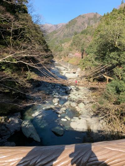 秘境の地 祖谷渓谷を訪れて