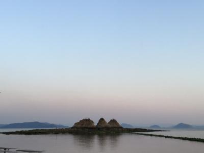 岡山☆備中国分寺の菜の花と三つ山
