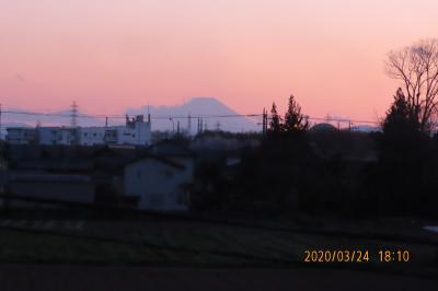久しぶりにみられた美しい夕焼け富士