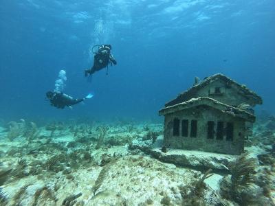 水中美術館でのダイビング