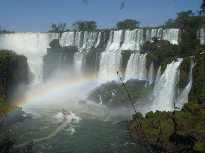 美しきイグアスの滝と動物たち(1501)