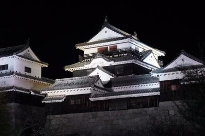 20200325-3 松山 夜の松山城散策