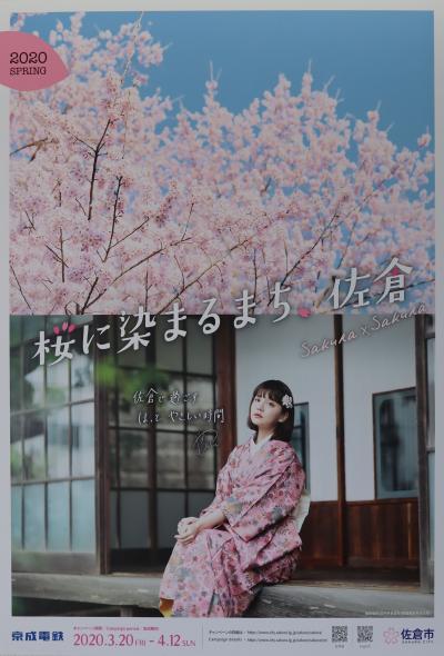 佐倉市散策(51)・・「桜に染まるまち.佐倉」をめぐります。