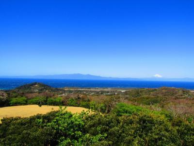 ついに開かれた(私に)島大島 初連泊の旅