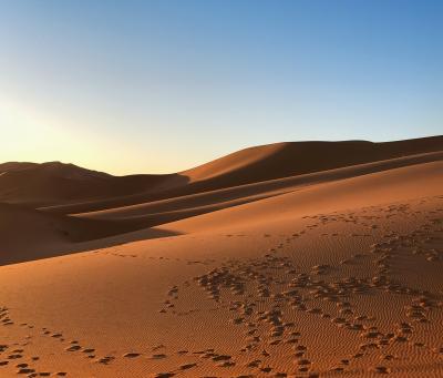 モロッコぐるっと1周の旅。4日目。サハラ砂漠〜〜!