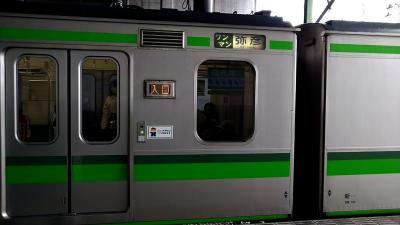 【新潟】 ローカル線と街散策【弥彦】