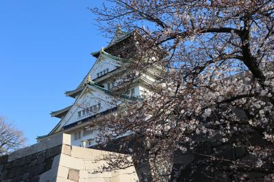 大阪城公園で桜開花