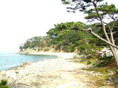 新型コロナで春籠り。 でも無人島なら安心? マイナスイオンの友ヶ島