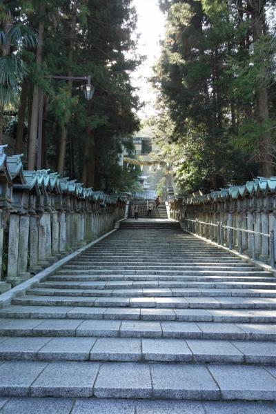 奈良から海を見る part2♪