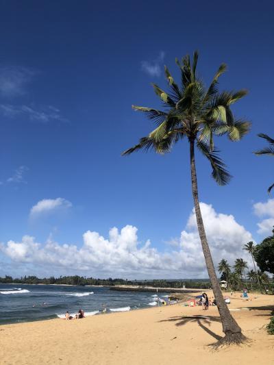 ハワイ挙式に参列!~気ままにひとり旅その1~