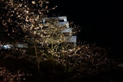20200328-4 大洲 大洲城のライトアップと夜桜