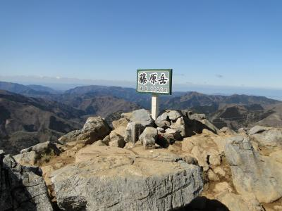 2020春 フクジュソウの咲く藤原岳登山