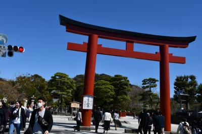 鎌倉見物、鶴岡八幡宮