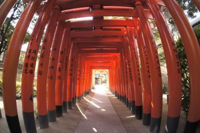 『どこかにマイル』で行く福岡・博多+大宰府を熟す旅4【蒼穹の博多編】