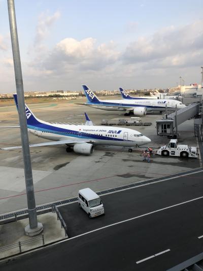 福岡空港新しくリニューアル