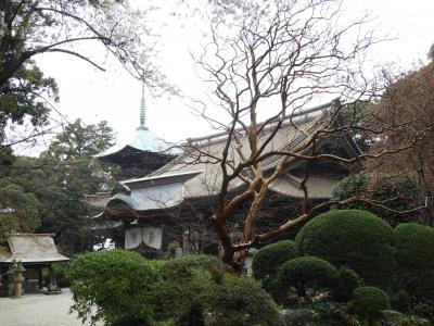 茨城県筑波 椎尾山薬王院参拝と小町庵で蕎麦を頂きました。