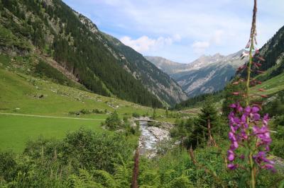 はじめてのチロルでハイキング③ツィラーグルントでハイク