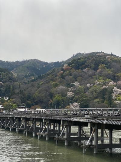 桜満開~嵐山