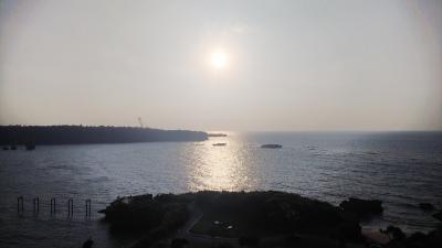 春を探して沖縄へ 2020冬の終わり②
