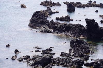 20200404-2 五島 鎧瀬溶岩海岸散歩