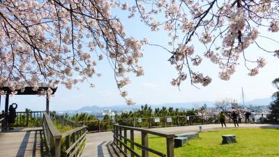 2020年 春 福岡市 桜名所巡り【桜満開の西公園 「中央展望広場」周辺散策編】