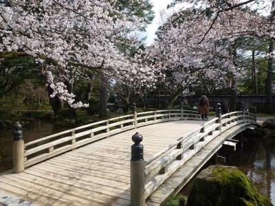 山代温泉 山下家と兼六園、金沢城の桜  2日目