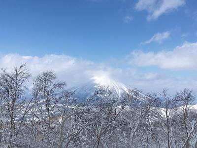 北海道 スキー ツアー 2020