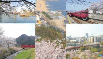 見ごろの桜と国鉄型電車のコラボを求め、大阪・兵庫そして北陸への旅~